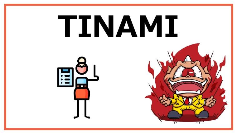 TINAMI
